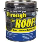 Through the Roof! 1 Gal. Cement & Patching Sealant Image 1